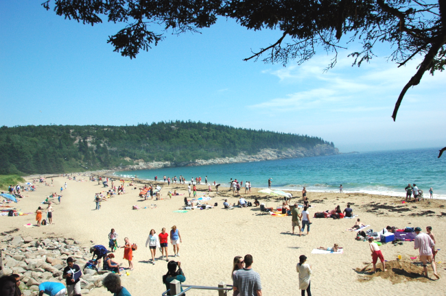 NET-sand-beach1