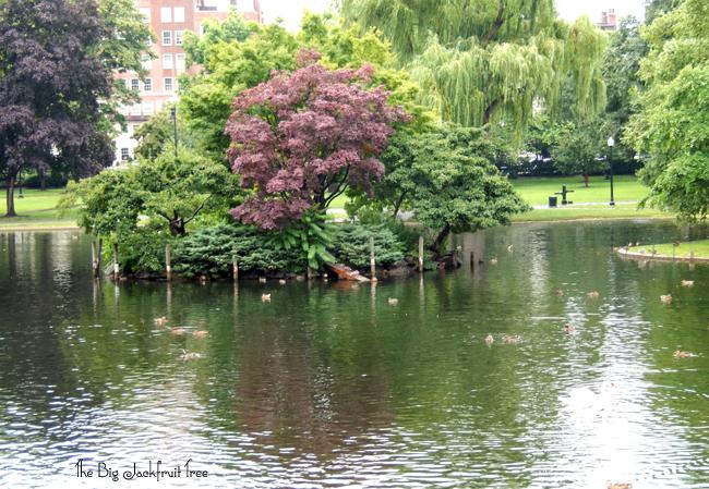 BCF-park