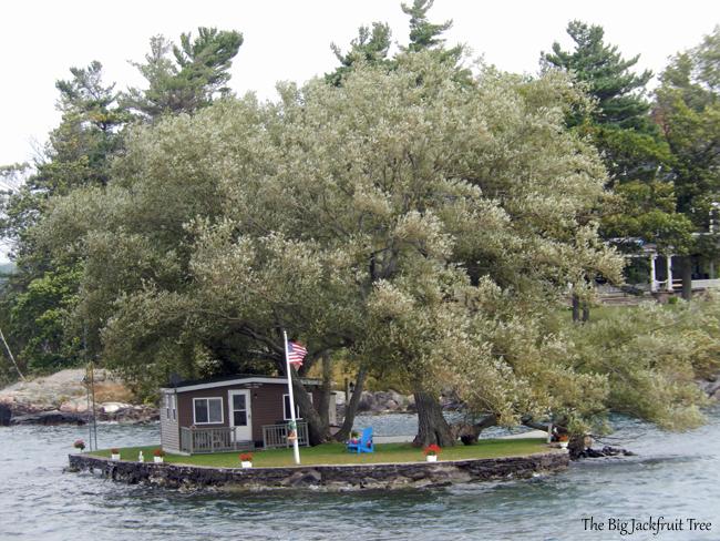 TI-single-home-island5