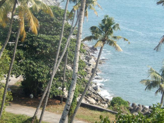 TGS-tangy-shore2