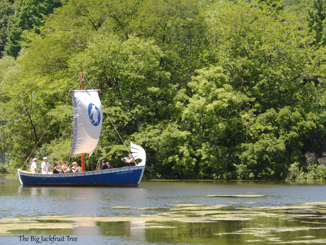 DDCP-Boat2